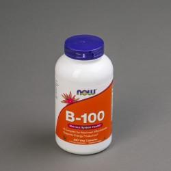 B 100